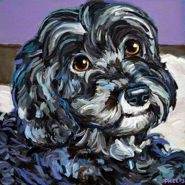 cozy black schnoodle canvas wall art by robert phelps on icanvas wall art id=41563