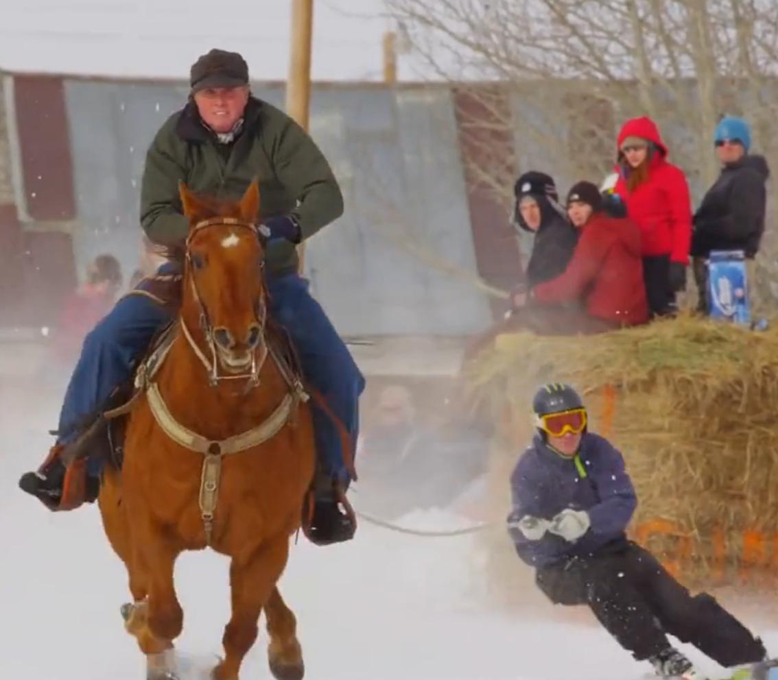 Es inútil tener que decidir entre el esquí y la equitación, el skijöring permite practicar ambos al mismo tiempo. ¡Emociones fuertes garantizadas! #esquí #sensaciones #fuertes #equitación #caballo #skijoring http://www.pandabuzz.com/es/video-del-dia/sorprendente-esquí-conducido