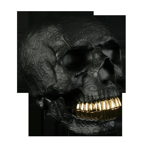 Skull With Gold Teeth Skull Art Skull Skull And Bones