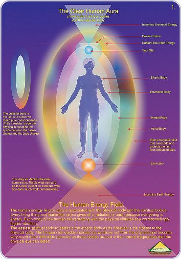 Directly Above The Skin S Surface The Human Energy Field