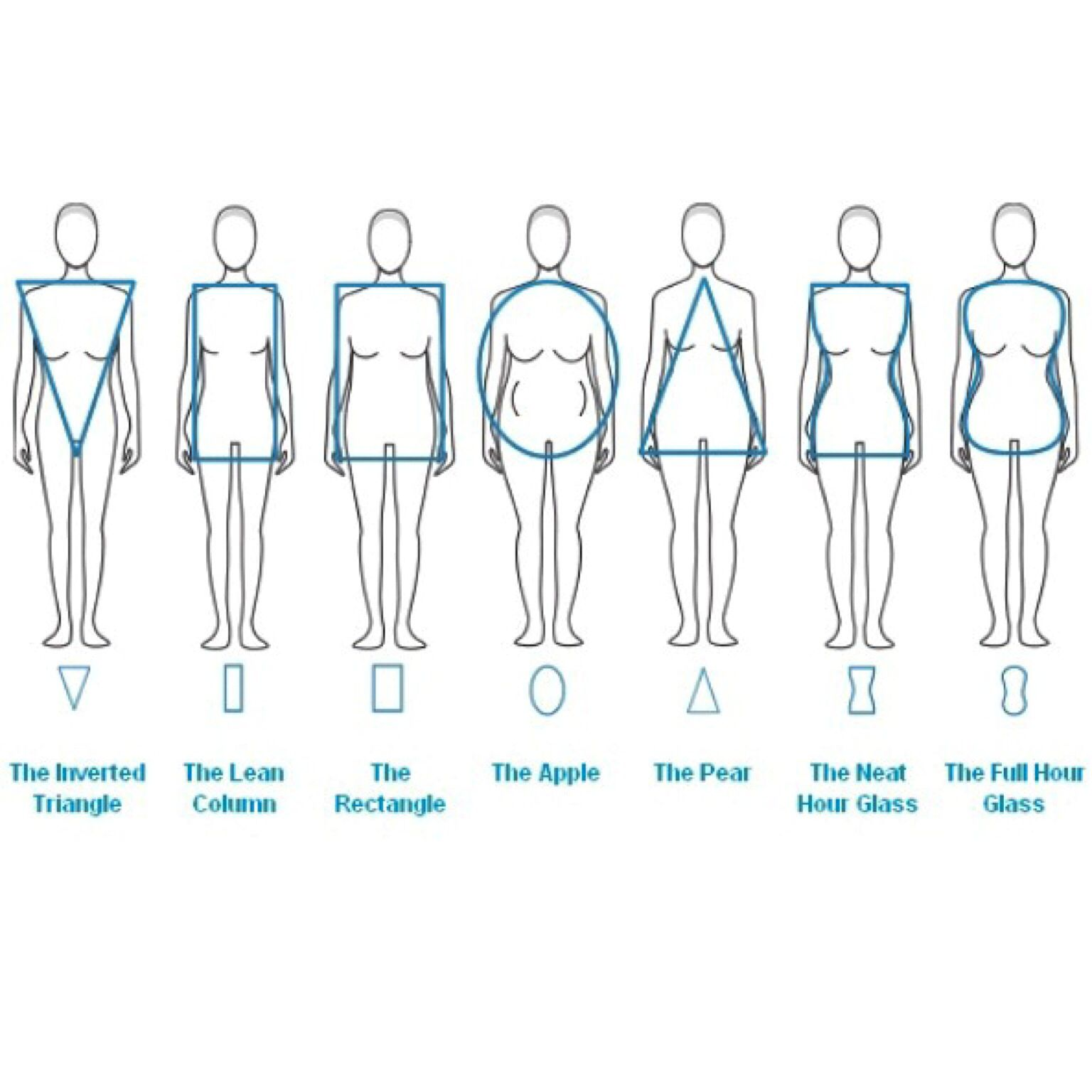 Which one is you body type and dress suit shape chart also rh pinterest