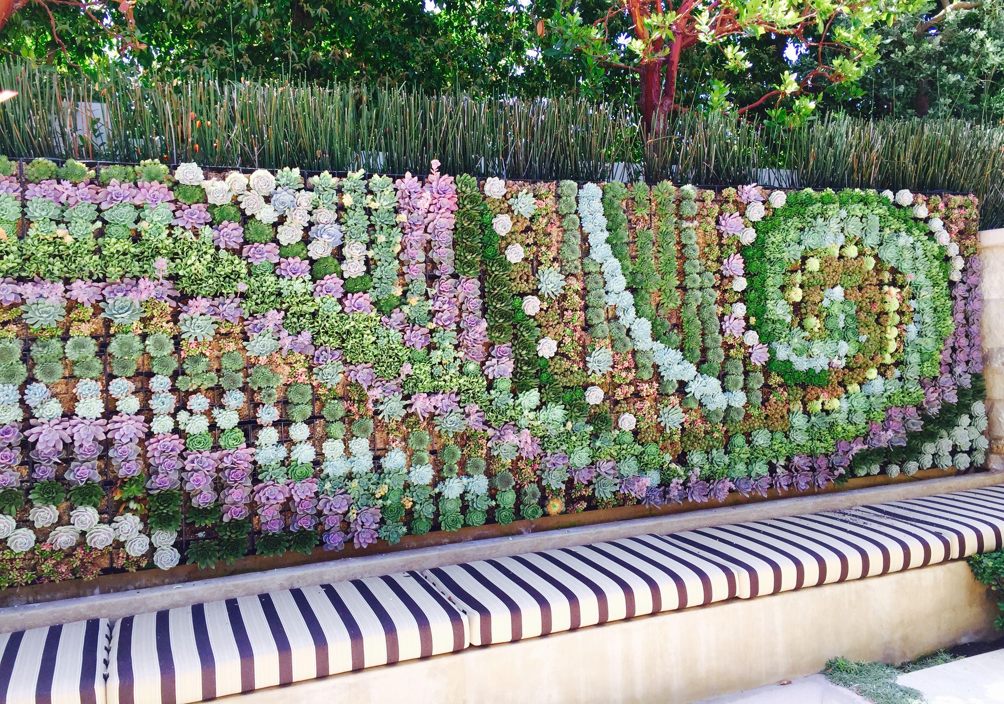 Succulent Wall Art Garden Wall Art Vertical Garden Wall