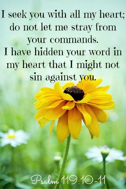 Image result for Psalm 119:10