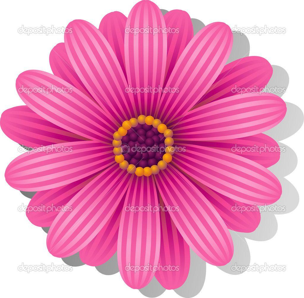 Pink Gerber Daisy Tattoos – Jerusalem House