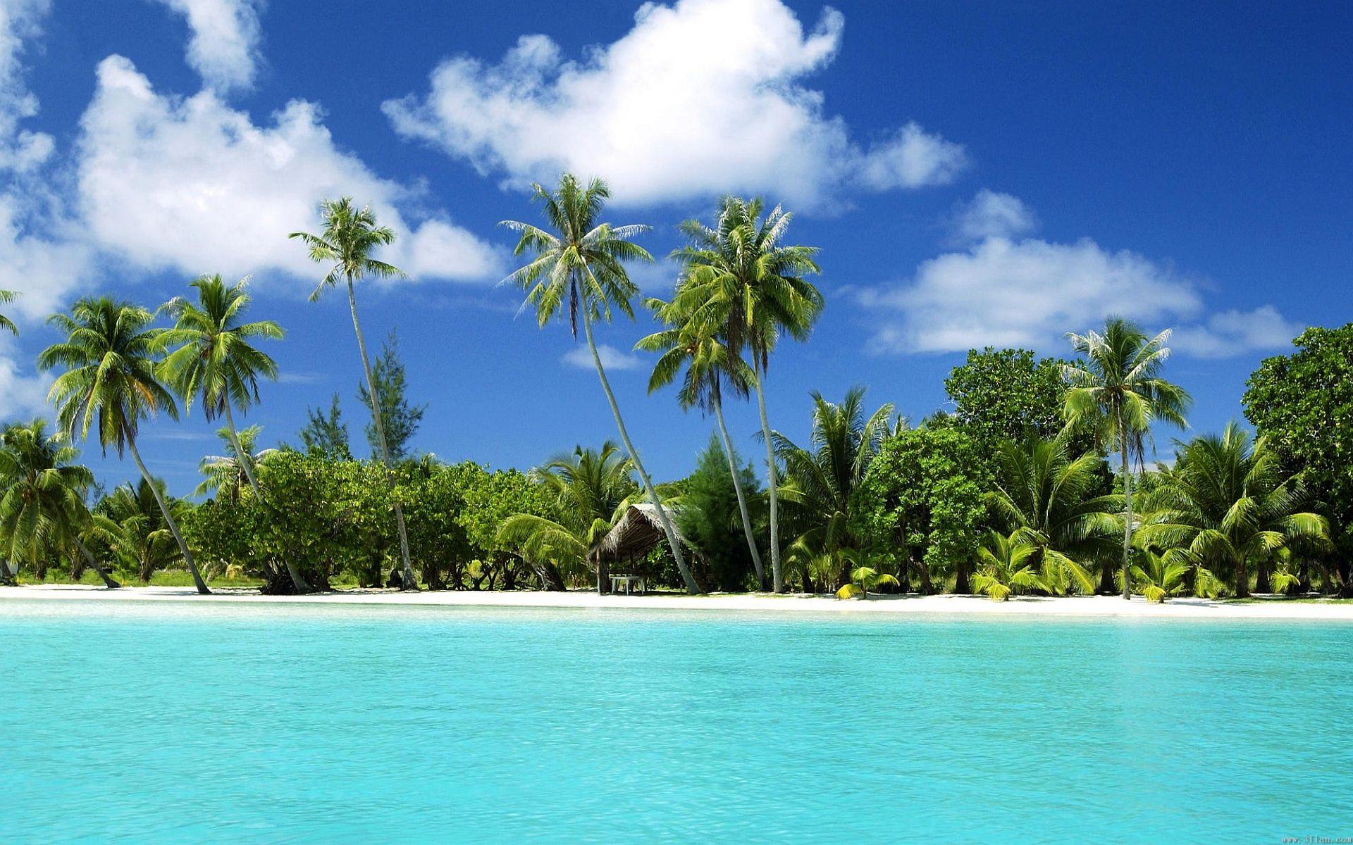 Tropical Beach Paradise Tropical Island Beach Beach Wallpaper Beach Paradise