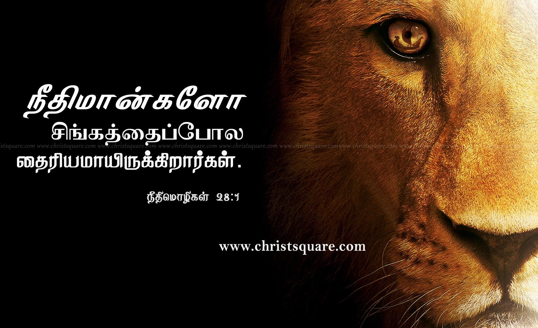tamil bible words wallpapers - photo #41