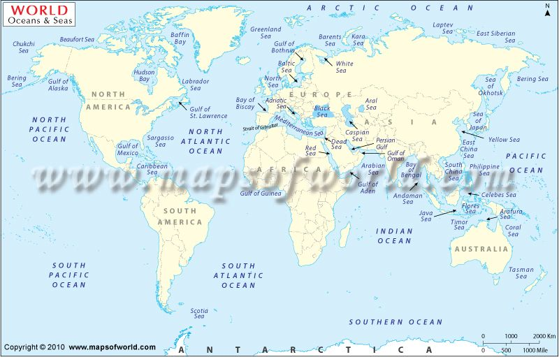 Oceans Of The World NatureEarthEnvironmentEcosystems - Major oceans of the world map