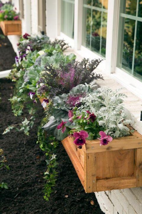 Fresh Window Box Ideas for Spring
