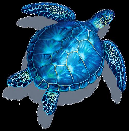 Blue Turtle With Shadow Porcelain Mosaic Sea Turtle Drawing Sea Turtle Art Sea Turtle Painting