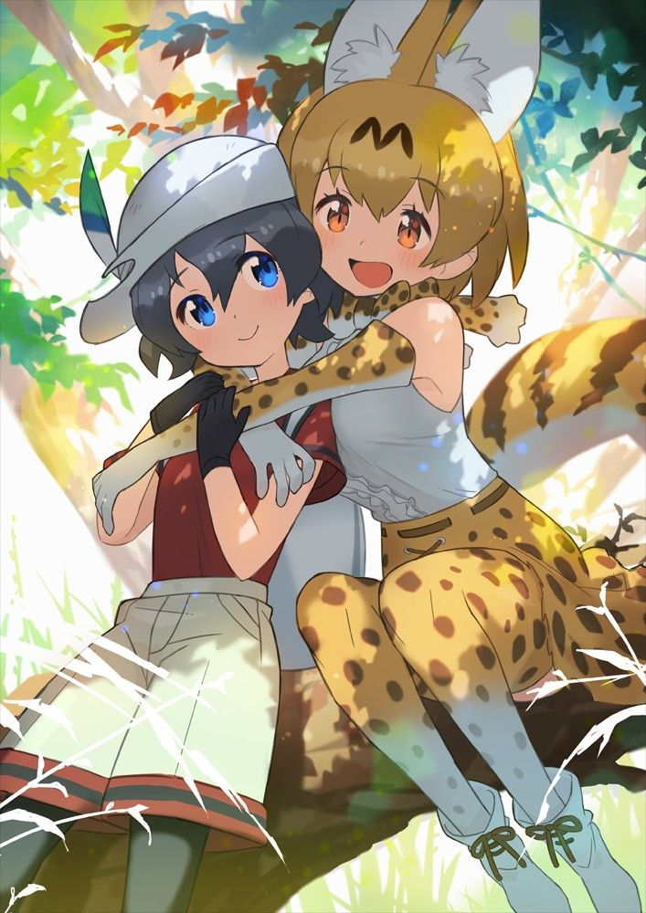 Image by Dam Son on Kemono and friends Cute anime pics