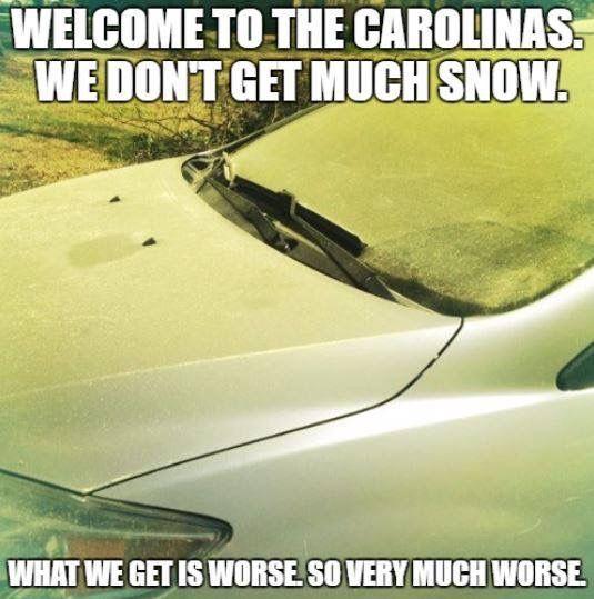 SC gets pollen, not snow.