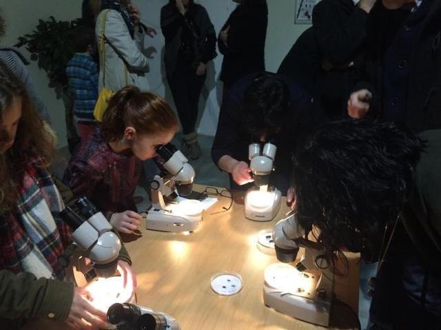 L'exposition de l'espace Mendès-France «Insectes, Hommes et biodiversité» a ouvert ses portes mardi à Poitiers. - L'exposition de l'espace Mendès-France «Insectes, Hommes et biodiversité» a ouvert ses portes mardi à Poitiers.