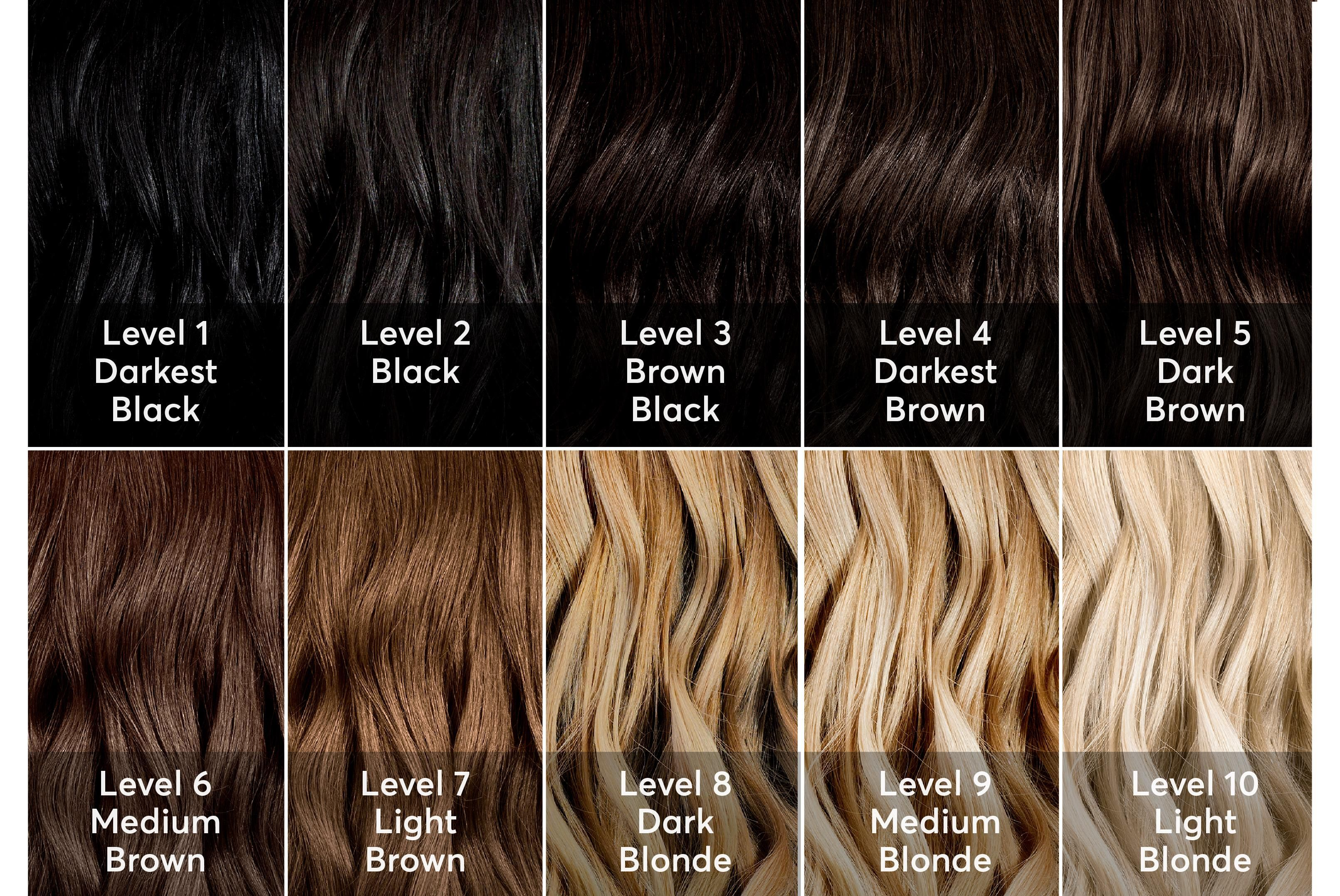 Brunette Hair Color Choices A Hair Color Chart To Get Glamorous Results At Home Blonde Hair Color Chart Ion Hair Color Chart Brown Hair Color Chart
