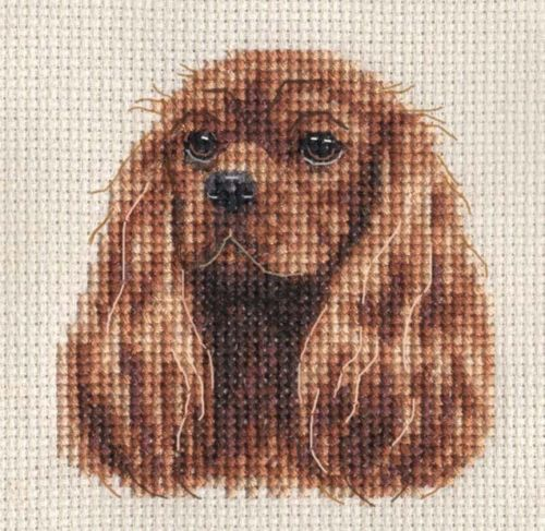 CAVALIER KING CHARLES SPANIEL dog ~ Counted cross stitch kit