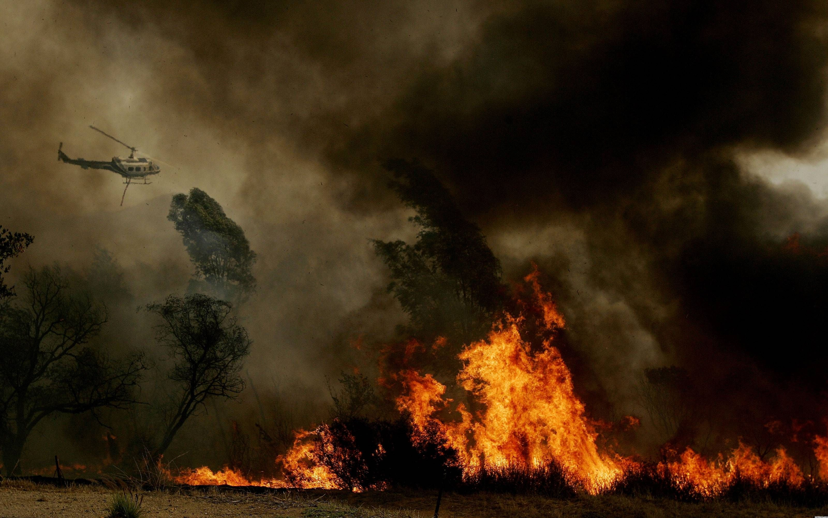 Forest Fire Wallpapers Wallpaper Cave Fire Photography Fire Image Photography Wallpaper