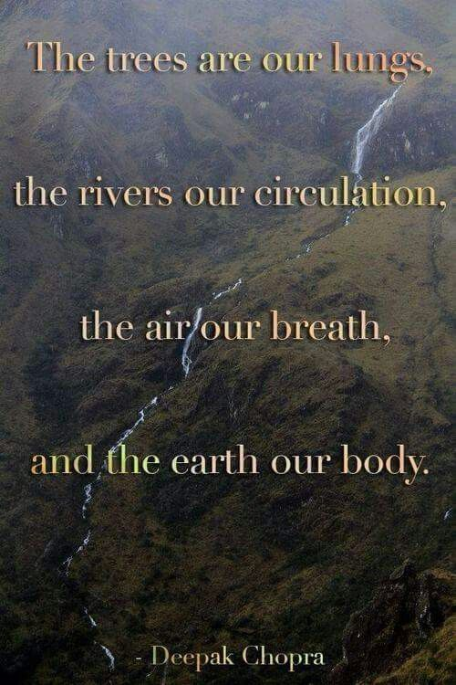 Image result for deepak chopra quotes on mother earth