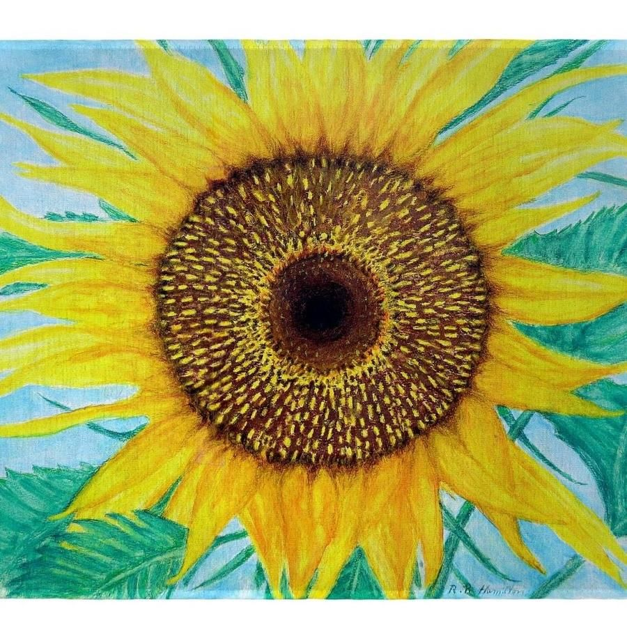 Dicks Sunflower Place Mat. Set of 4Specifications. Betsy Drake Interiors Betsy Drake PM1003 Dicks Sunflower Place Mat- Set of 4 | BTDR4864