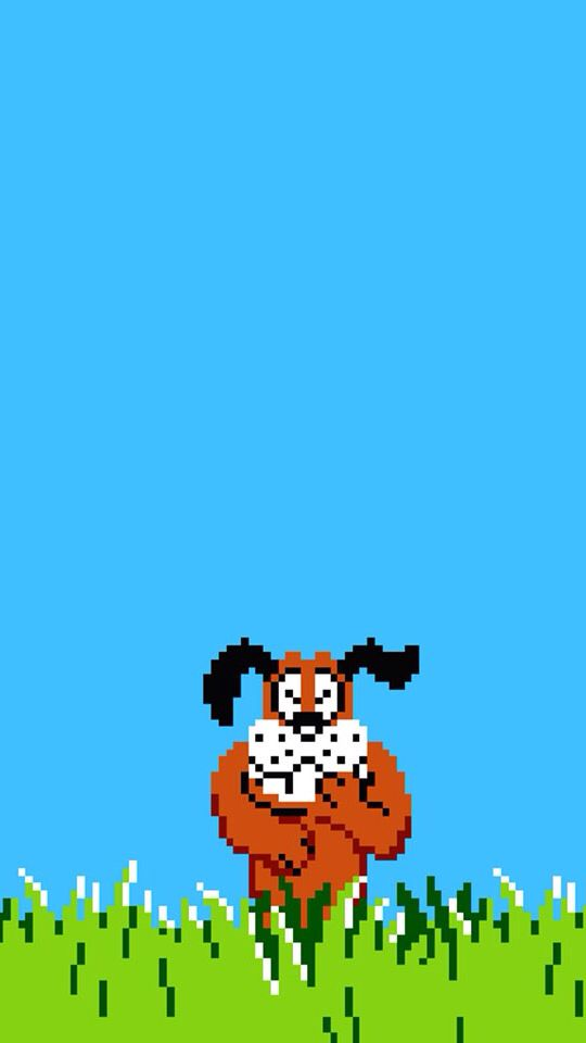 Duck Hunt Iphone5 Wallpaper Mach Es Moglich Duck hunting wallpaper for iphone