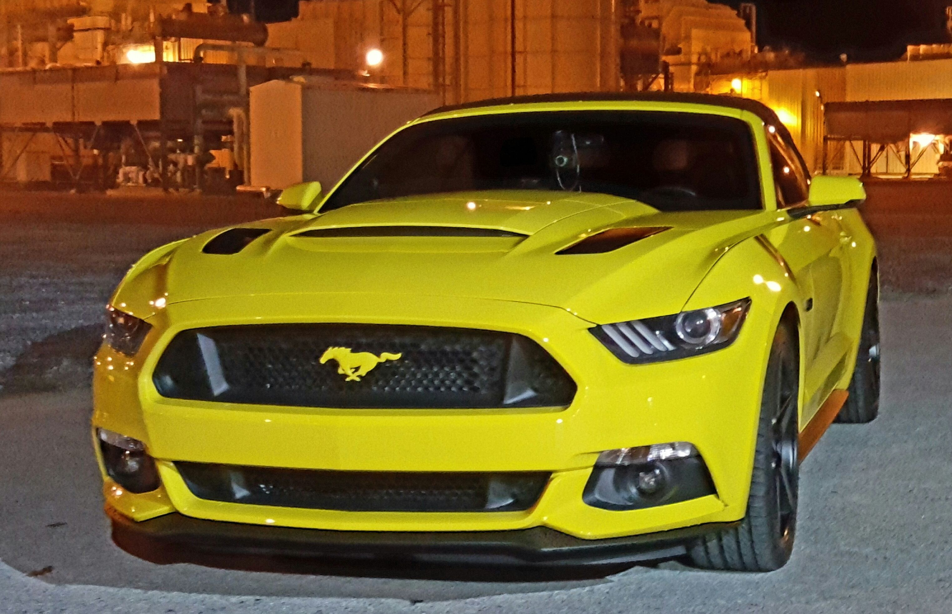 Look At The Color Matching Emblems The Roush Hood Scoop On