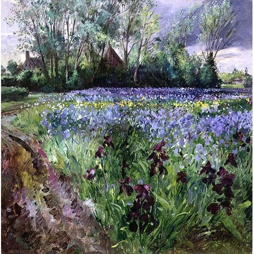 Iris Field and Passing Storm Clouds, 1991 by Timothy