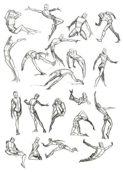 Body Frame Drawing Reference Guide   Drawing References and ...