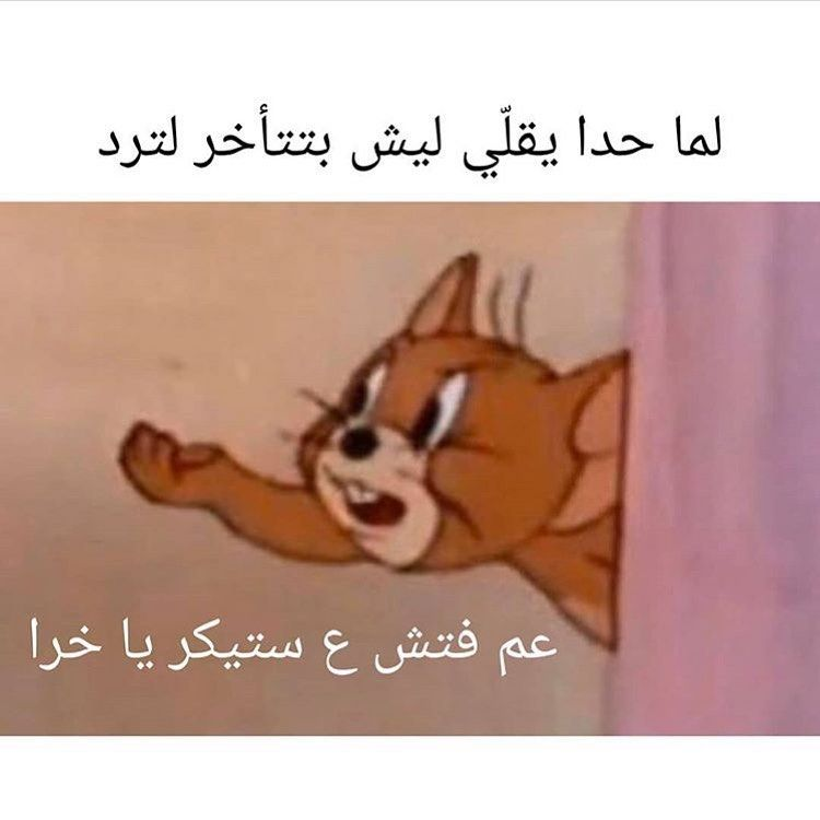 4 556 Likes 231 Comments شـــباب فـــيكة Shababfeeka On Instagram منو هيج يحب Funny Picture Quotes Funny Photo Memes Funny Baby Quotes