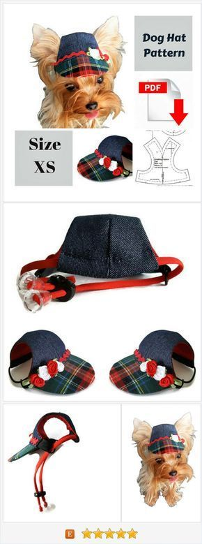 Small dog hat pattern for dog Pet hat PDF Dog hat sewing Pdf Dog ...