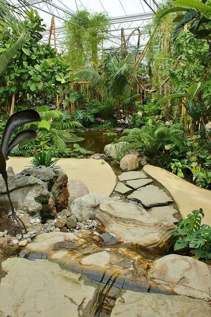 Rainforest Pavilion Water Feature With Images Water Features