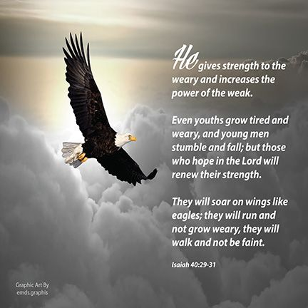 Fly Through Barriers And Soar To New Heights Dream Biq Betieve You Can Achieve And Stronq Eagles Quotes High Quotes Eagles