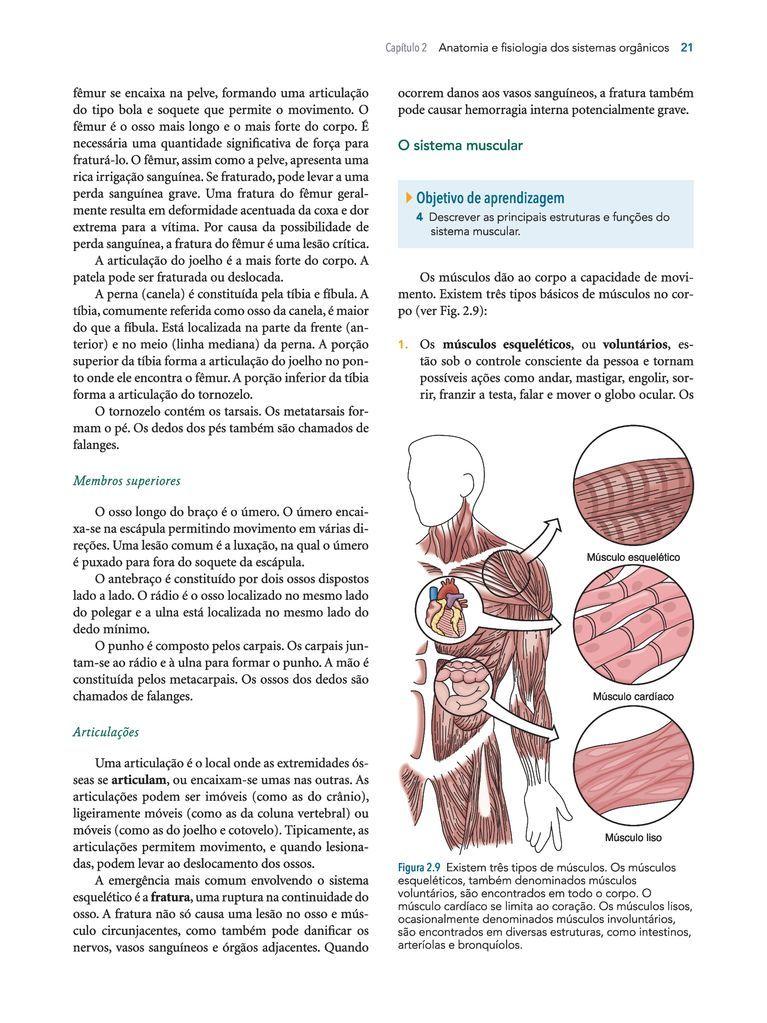 Increíble Anatomía Y Fisiología Capítulo 2 Cresta - Imágenes de ...