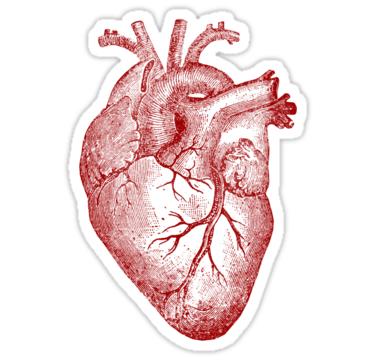 Heart Stickers By Liam O Reilly Redbubble Adesivos Bonitos Adesivos Adesivo Notebook
