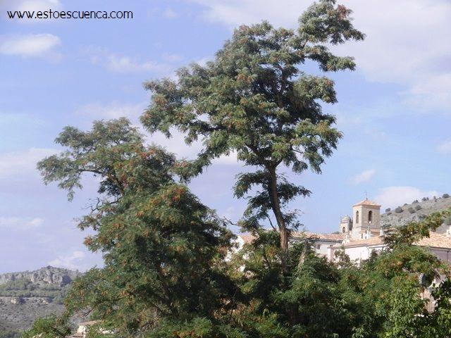 """#Geocaching en #Cuenca: Busca """"Tesoros"""" por la ciudad."""