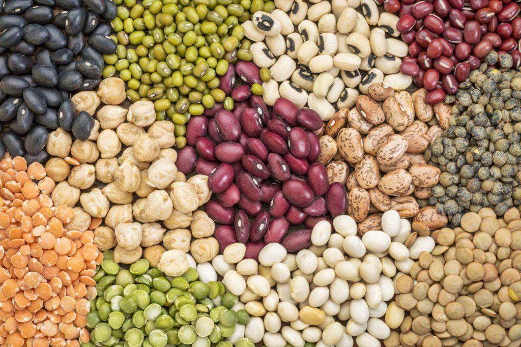 Saatgutversender für altbewährte Sorten: Unsere Top 9 #anbauvongemüse