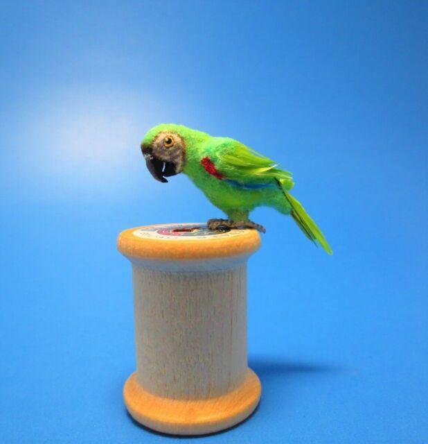 Miniature Terrific Blue/Yellow, Green Macaw, Wings Spread: DOLLHOUSE 1:12 Scale | eBay
