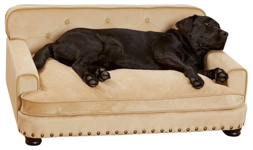 Mini pet couch pet sofa dog sofa library dogs