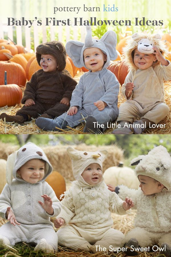 Give Your Little One A Memorable First Halloween With