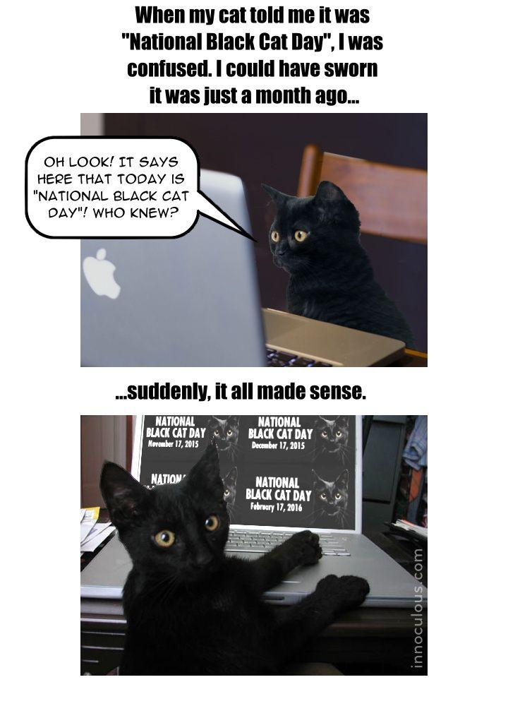 National Black Cat Day 720 Jpg 720 1000 National Black Cat Day Black Cat Day Today Is National