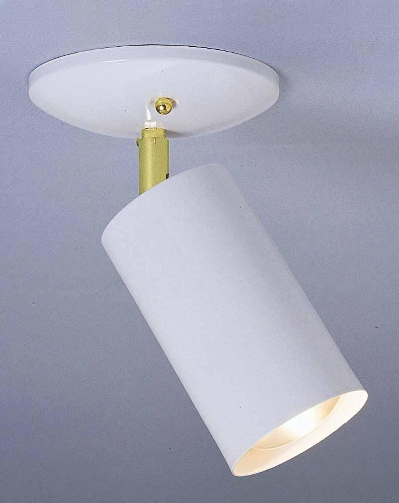 Single Cylinder Directional Spot Light Wall Or Ceiling