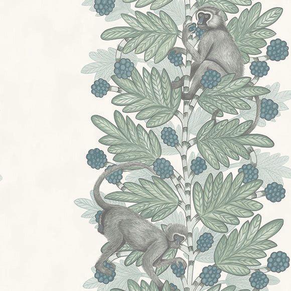 papier peint acacia petit singe faire partie de et afrique du sud. Black Bedroom Furniture Sets. Home Design Ideas
