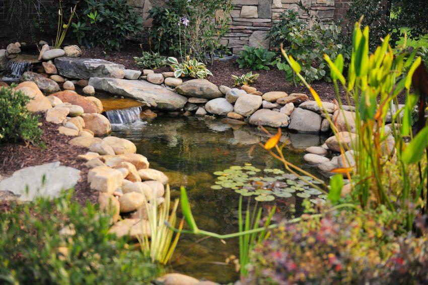 60 Backyard Pond Ideas Photos Fish Pond Gardens Ponds Backyard Pond Landscaping