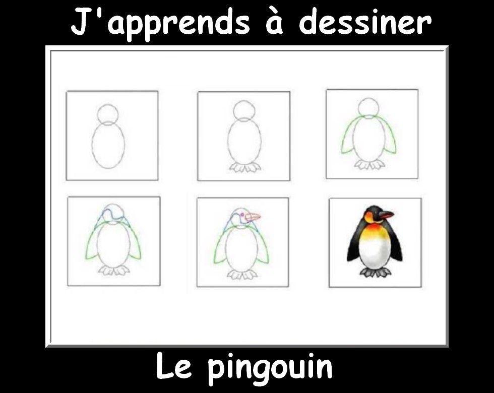 J 39 apprendre a dessiner pingouin pingouins pinterest dessiner dessin et p le nord - Apprendre a dessiner un pingouin ...