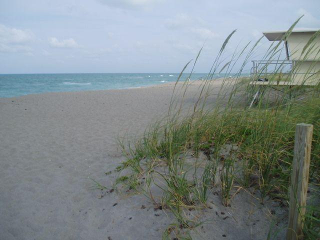 Hobe Sound Fl Beach