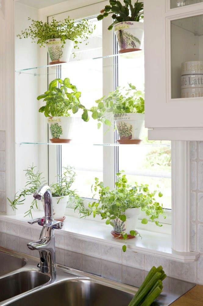 Hausratversicherungkosten Best Ideas Enchanting Kitchen Window Herb Pots Collection 6398