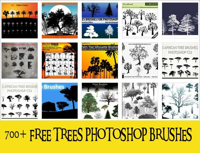 If you need some good quality tree brushes for your projects now or in the future, then we suggest that you bookmark this page. Here, you will find more than 700 tree Photoshop brushes–perhaps, more than what you will ever need in this lifetime.