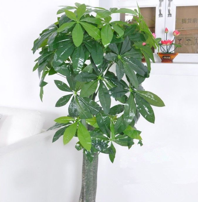 More photoes of silk flowerssilk trees and plants please visit here more photoes of silk flowerssilk trees and plants please visit here s996otobucket mightylinksfo