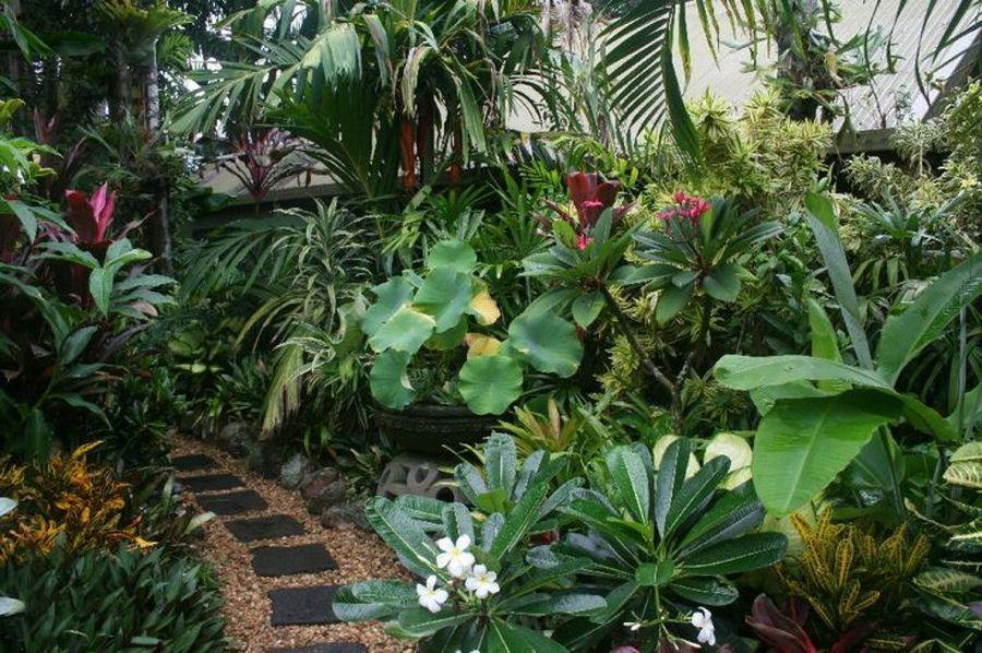Recopilaci n de jardines tropicales tan bellos que for Plantas y jardines fotos