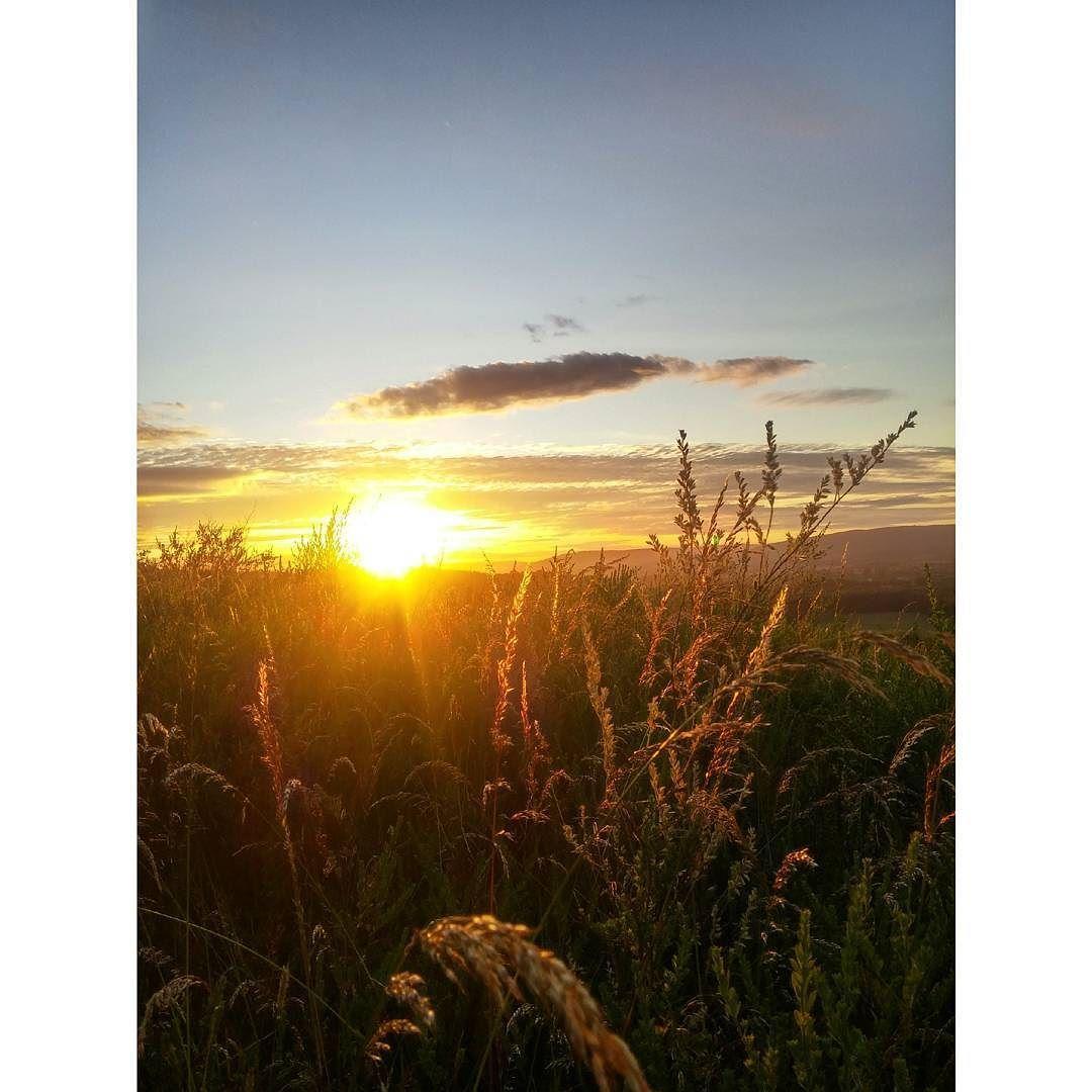 On instagram by miguel.angel93._ #landscape #contratahotel (o) http://ift.tt/1JsMheO atardecer te da la oportunidad de reflexionar y ser mejor al amanecer  . .  #instavaldivia #valdivia #paisajes #chilegram #chile #instachile #valdiviacl #141 #like #likeforlike #tagsforlikes #photoday #instamoment #temuco #santiago #instagram #osorno #nature #naturaleza