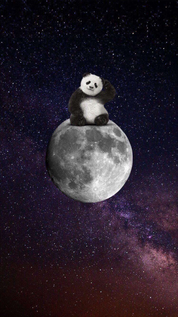 Pin By Kubra Tuncer On Moon Panda Art Cute Panda Wallpaper Panda Wallpapers Hd wallpaper panda meditating on moon