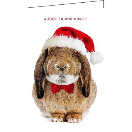lustige weihnachtsgedichte f r hunde geschenke klappkarte f r weihnachtsw nsche set mit