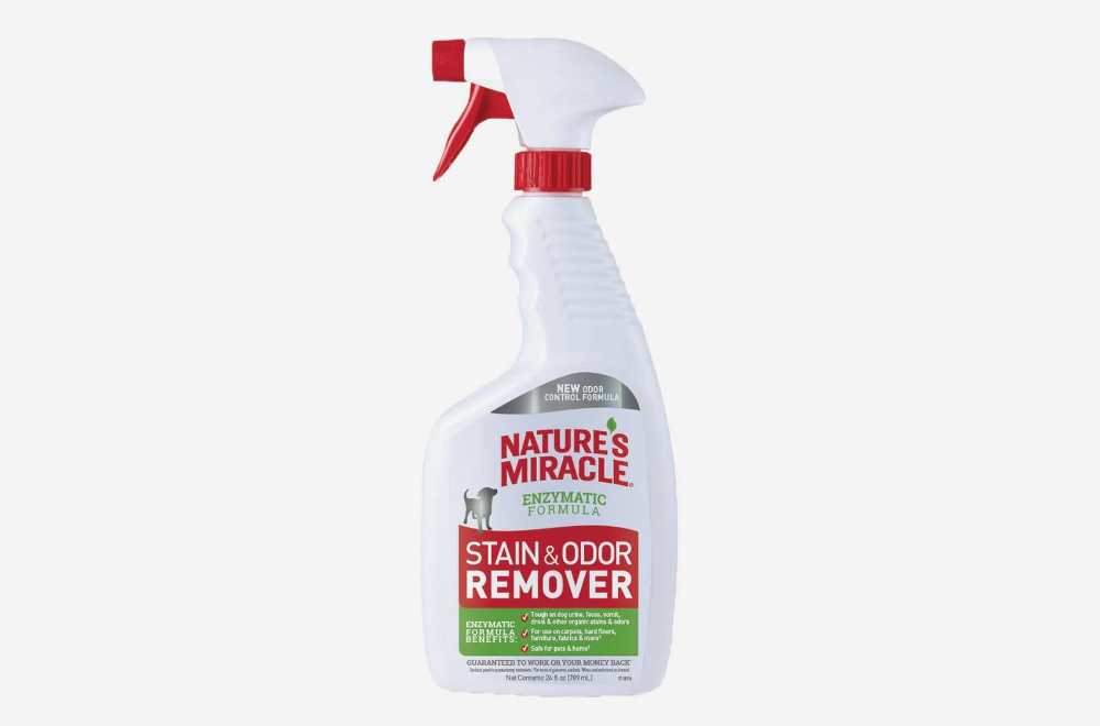 Nature's Miracle Stain and Odor Remover Review 2019 Odor